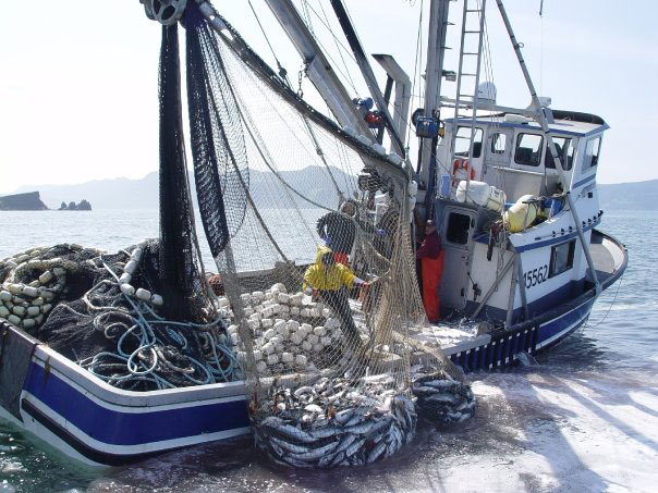 product commercial fishing