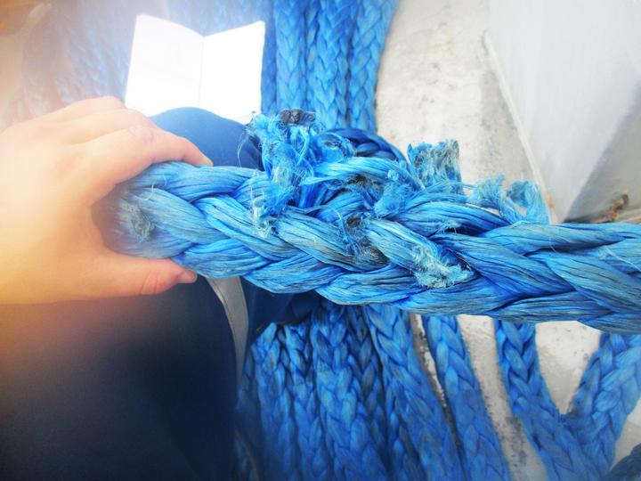 Damaged AmSteel-Blue